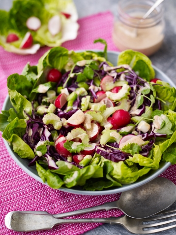 Crunchy superfood radish, celery and red cabbage salad